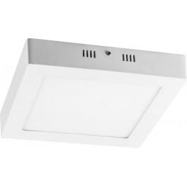 Светодиодный светильник AL505 накладной 12W 4000K белый