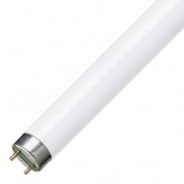 Лампа OSRAM-СМ L18W/ 865 LUMILUX G13 d26x 590 1300 lm 6500K