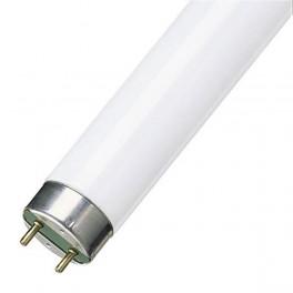 Лампа L30W/765 G13 D26mm 895mm 6500K - люм