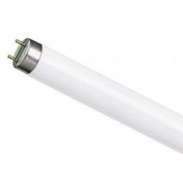 L 18 W/765 Russia G13 6400K лампа люм. Osram