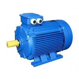 Электродвигатель АИР 90 L2 3кВт 3000об/мин 1081(лапы)